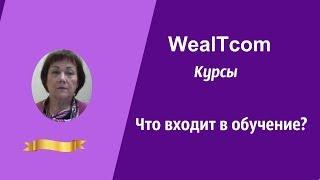 WealTcom КУРСЫ ЧТО ВХОДИТ В ОБУЧЕНИЕ