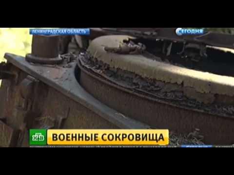 Под Петербургом нашли