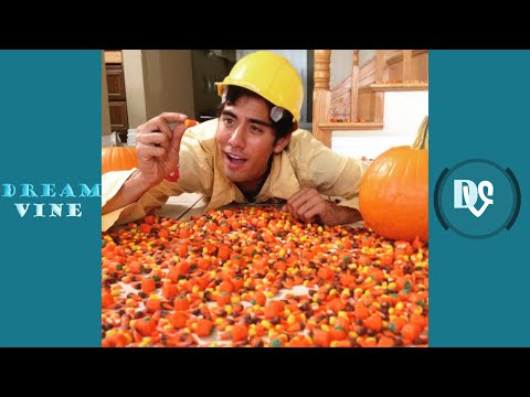 Zach King Magic Vines 2016 | Best Zach King Magic Tricks