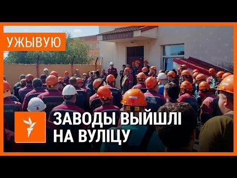 Працоўныя «Беларуськалія» і