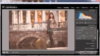 Уроки Lightroom 4 Модное тонирование фотографии