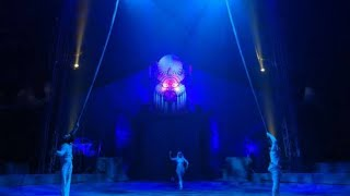 Circus Performer Makes Everyone Go CRAZY|New Circus|Entertainment And Science
