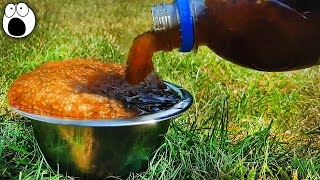 Top 10 Summer Life Hacks You Should Try Right Now! you 検索動画 25