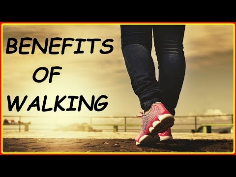 Health Benefits of Walking Daily for Weight Loss & Fitness 10 Advantages of Walking as an Exercise