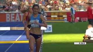 2017-08-27 3000m Steeplechase -  IAAF World Challenge - ISTAF Berlin