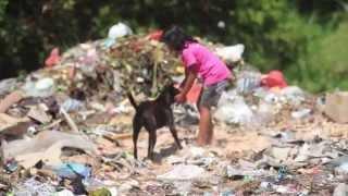 Bali Animal Welfare Association: A Little Help From You