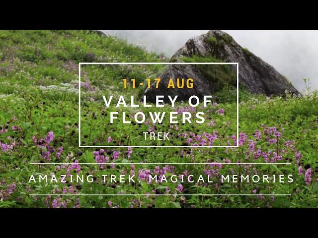 The Valley of Flowers Trek | Aug 11-17, 2018