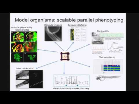Integrating Model Organism Data around Clinical Genomics - Calum MacRae