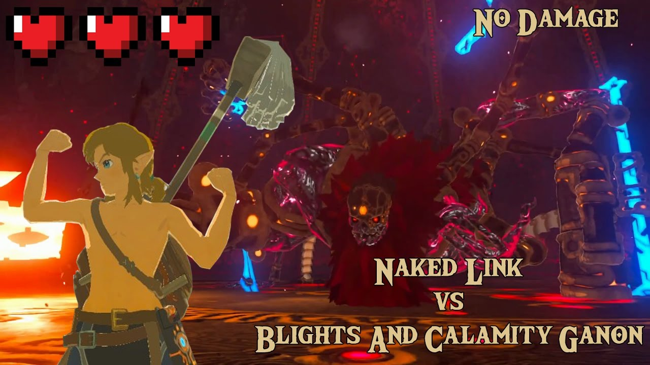 Tloz Botw Naked Link Vs Blights And Calamity Ganon No Damage