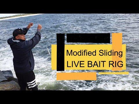 Sliding Live Bait Rig [How To]