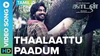 thaalaattu-paadum-video-song-kaadan-rana-daggubati-prabu-solomon-vishnu-zoya-shriya
