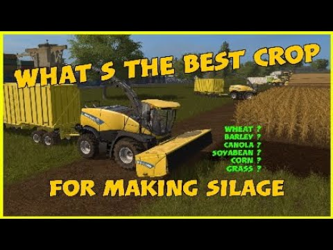 WHATS THE BEST CROP FOR MAKING SILAGE FS17 SUSSEX FARM