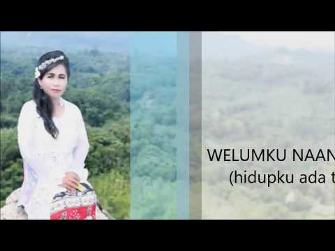welumku naan tujuan (Lyric video)