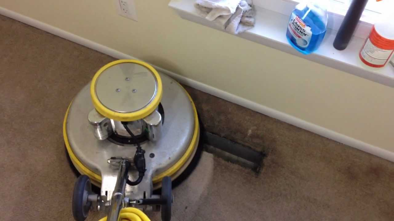 Sanitize 4 Serenity Deep Carpet Cleaning Dual Process