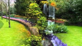 Vozes da Primavera-valsa de Strauss -wmv