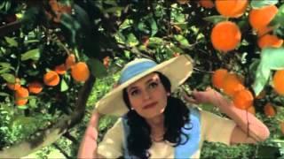 Trailer Vale Abraão - Ana Félix