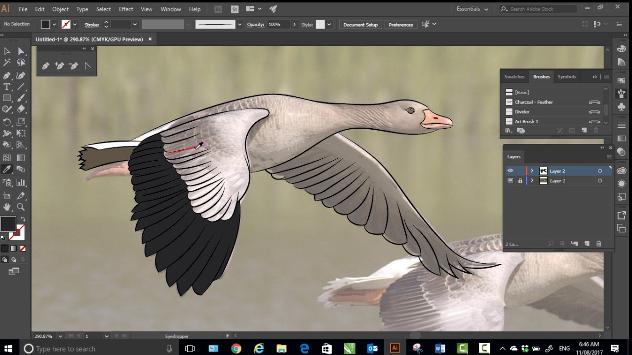 Line Art Help : Adobe illustrator line art and colour how to draw a bird youtube