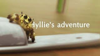 Hyllie's adventure (animation)