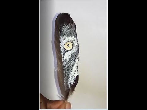 FEATHER ART HUSKY EYE - THE CREATOR ARTS AND CRAFTS STUDIO