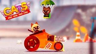 КОТИК и БОЕВЫЕ МАШИНЫ #1 ВИДЕО про машинки cats crash arena turbo VIDEO cars