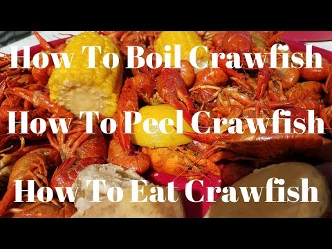 How To Boil Crawfish -  How To Peel Crawfish -  How To Eat Crawfish