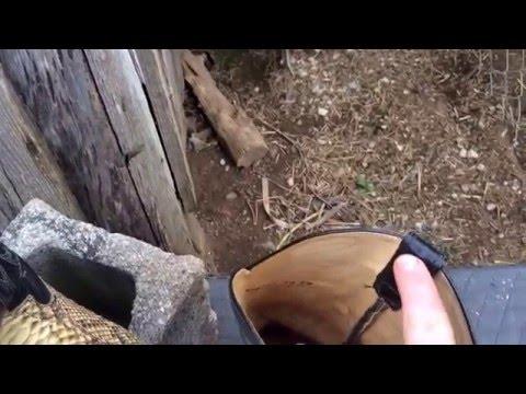 Python snake skin cowboy boots