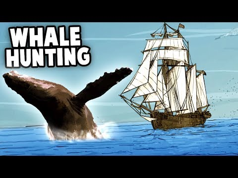 Whale Hunting!  MOST FUN GAME!  Chasing Moby Dick (Nantucket Gameplay Part 1)