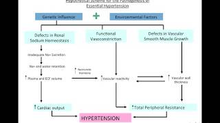 Hypertension at home Lecture
