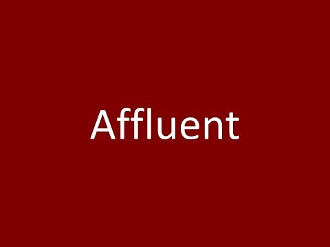 Affluent Meaning Definition Pronunciation Example Synonym Antonyms