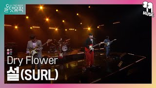 [올댓뮤직 All That Music] 설(SURL) - Dry Flower