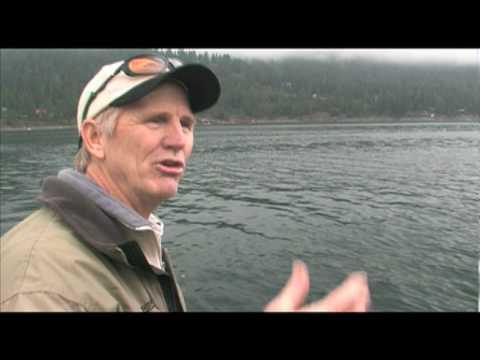 Wallowa Lake Or Kokanee Trout This Week On Awtv