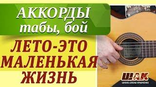 ЛЕТО-ЭТО МАЛЕНЬКАЯ ЖИЗНЬ - О.Митяев как играть на гитаре. Уроки игры на гитаре для начинающих