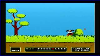 Duck Hunt (Wii Homebrew)