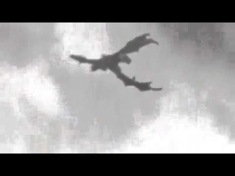 60 >> Penampakan naga terbang - YouTube