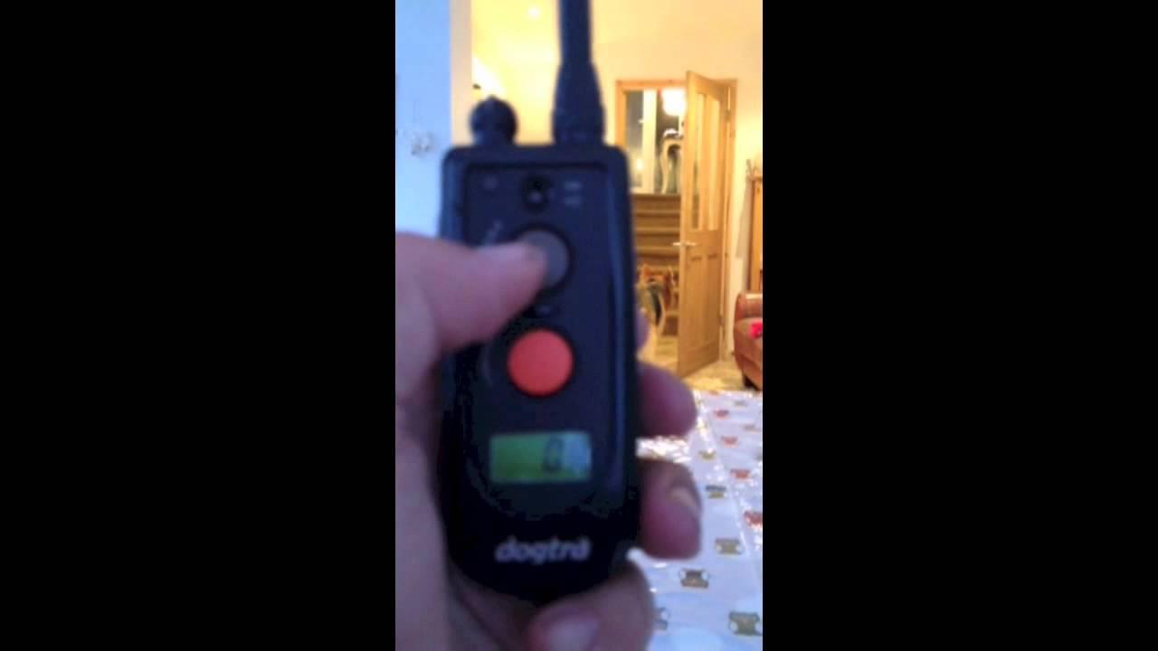 dogtra e-collar, vibration only recall - No stimulation