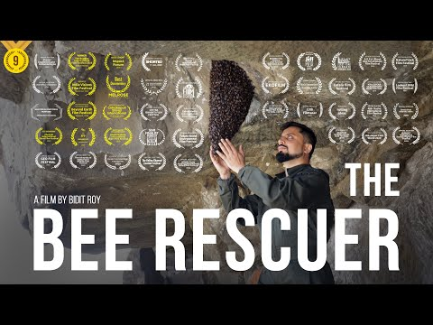 The Bee Rescuer|Short Film of the Day