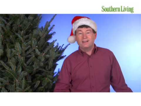 Time Saving Holiday Decorating Tips from The Grumpy Gardener
