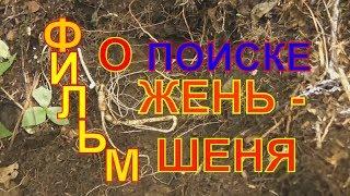 Фильм о поиске Жень-Шеня в Приморском крае! Корневка!