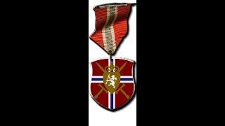 Battlefield Norge Platoon