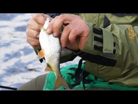 рыбалка на чебака весной