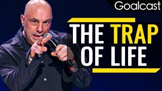 Don't Fall Into The Trap Of Life   Joe Rogan