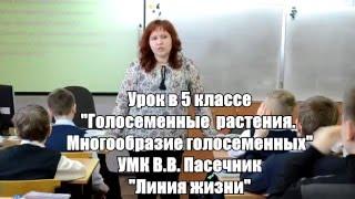 """Урок """"Голосеменные растения"""" по ФГОС 5 класс"""