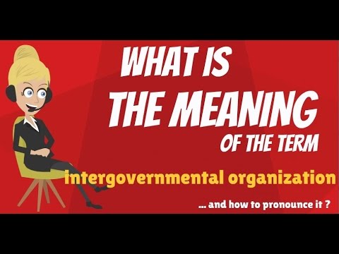 What is INTERGOVERNMENTAL ORGANIZATION? What does INTERGOVERNMENTAL ORGANIZATION mean?