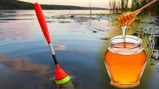 ЛОВЛЯ КАРАСЯ НА МЁД 👍 Сломал удочку! Рыбалка на красивом пруду ✔️