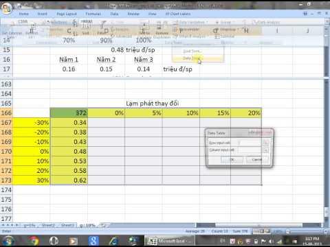 Phân tích rủi ro dự án (Risk analysis of investment project) - Trần Đức Luân (NLU)