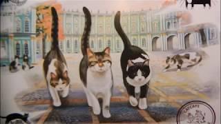 1 марта-День котов. Коты Санкт-Петербурга. Часть 1