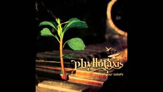 Phyllotaxis - Carry On