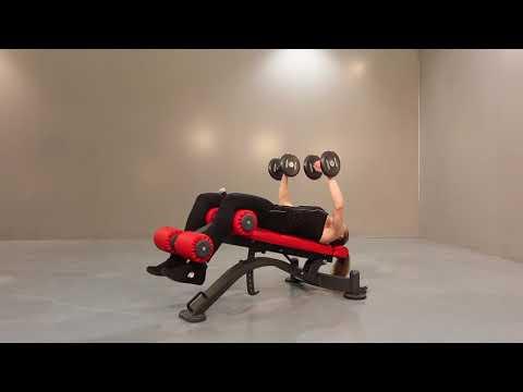 1HP216 - Multipurpose sit up bench