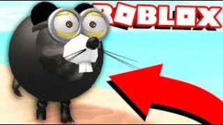 HOW TO MAKE A ROBLOX RAT (from flamingo's video)