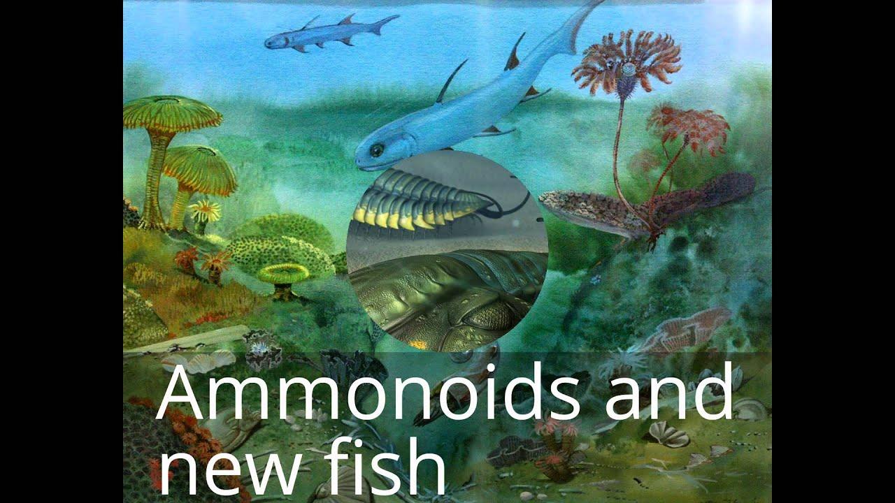 Paleozoic era YouTube